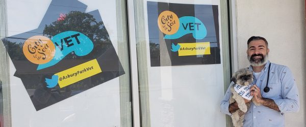 City By The Sea Veterinary Opens In Shops At Sunset Point